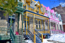 Colorful Houses of Montreal