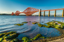 Pont Firth of Forth, Ecosse