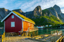 Lofoten Summer Landscape, Norway