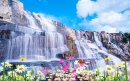 Waterfall with Flowers