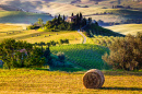 Toscane, campagne Italienne